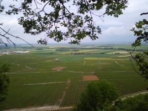 Vue du haut de la falaise de Vertus